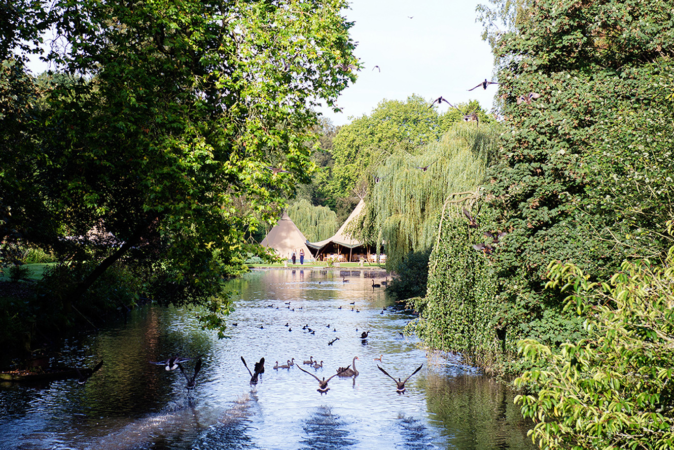 View of wedding tipis from the rustic stone bridge with geese and ducks flying above the Canal lake at Busbridge Lakes